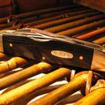 case trapper black folding knife